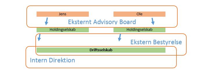 advisory bestyrelse direktion